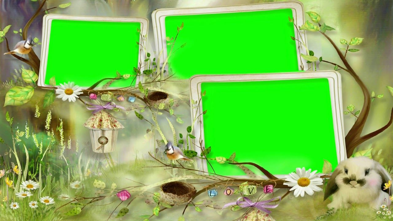 Wedding Video Background Green Screen Animated Effects