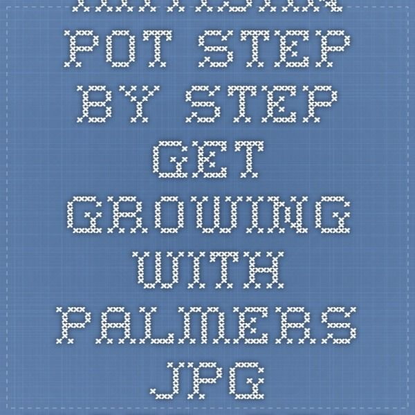 artisan_pot_step_by_step-get_growing_with_palmers.jpg (4953×3508)