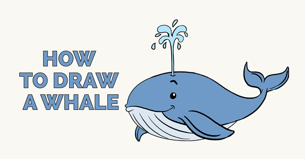 How To Draw A Whale In A Few Easy Steps Rehearsal Dinner Drawing