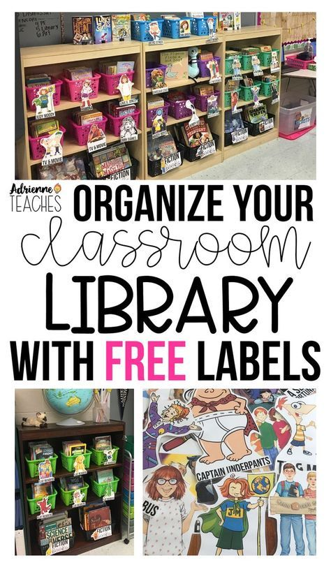 Classroom Library Organization That Works For You