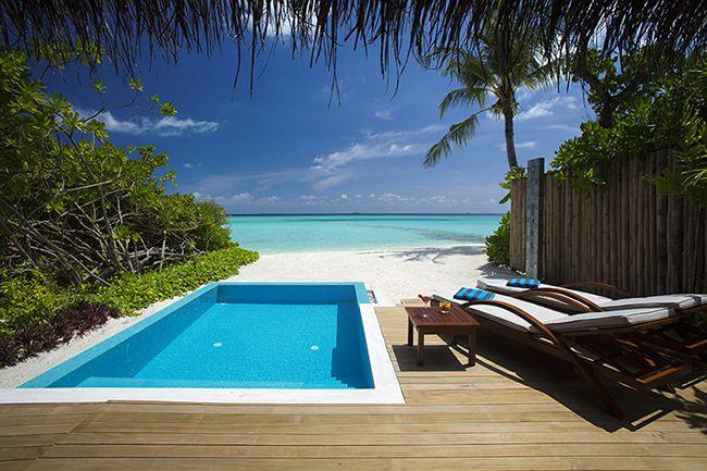 Beach Villas Maldives | Beach Villas at Velassaru Maldives | Villa Resorts  | Beach villa, Maldives beach, Beaches in the world