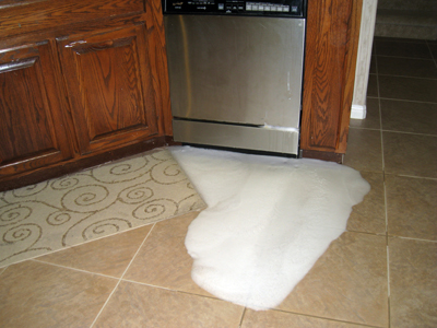 6 Causes Of Dishwasher Leaks They Re More Common Than You Think Dishwasher Leaking Home Maintenance Home Repairs