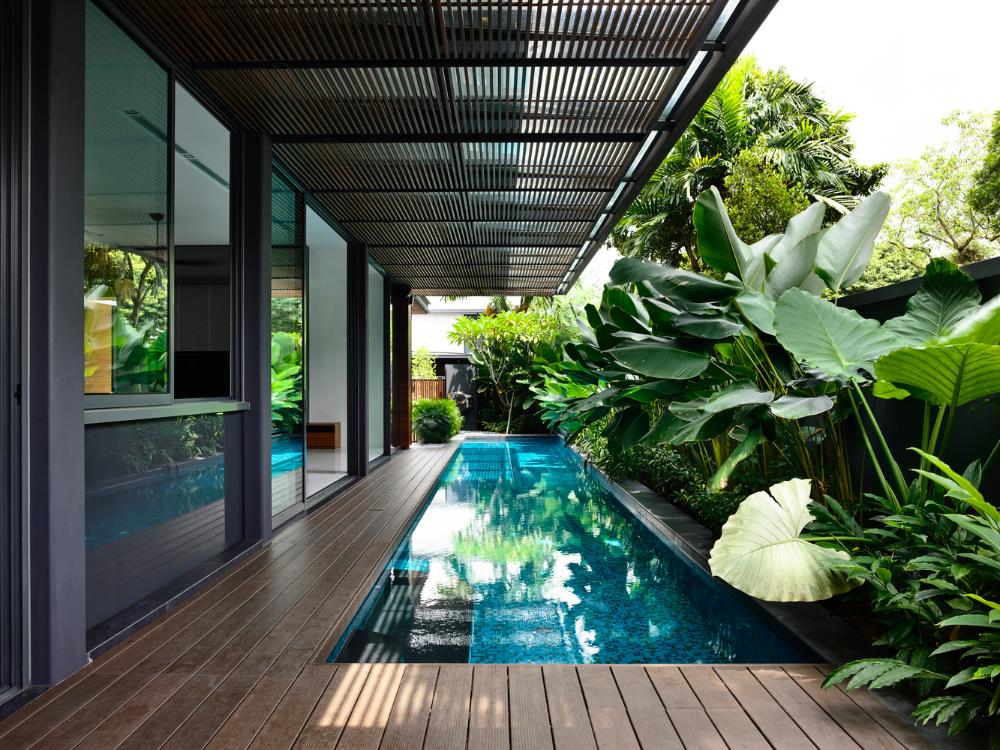 Gallery Of Verdant Verandahs House Hyla Architects 5 Backyard Pool Designs Pool Houses Small Pool Design