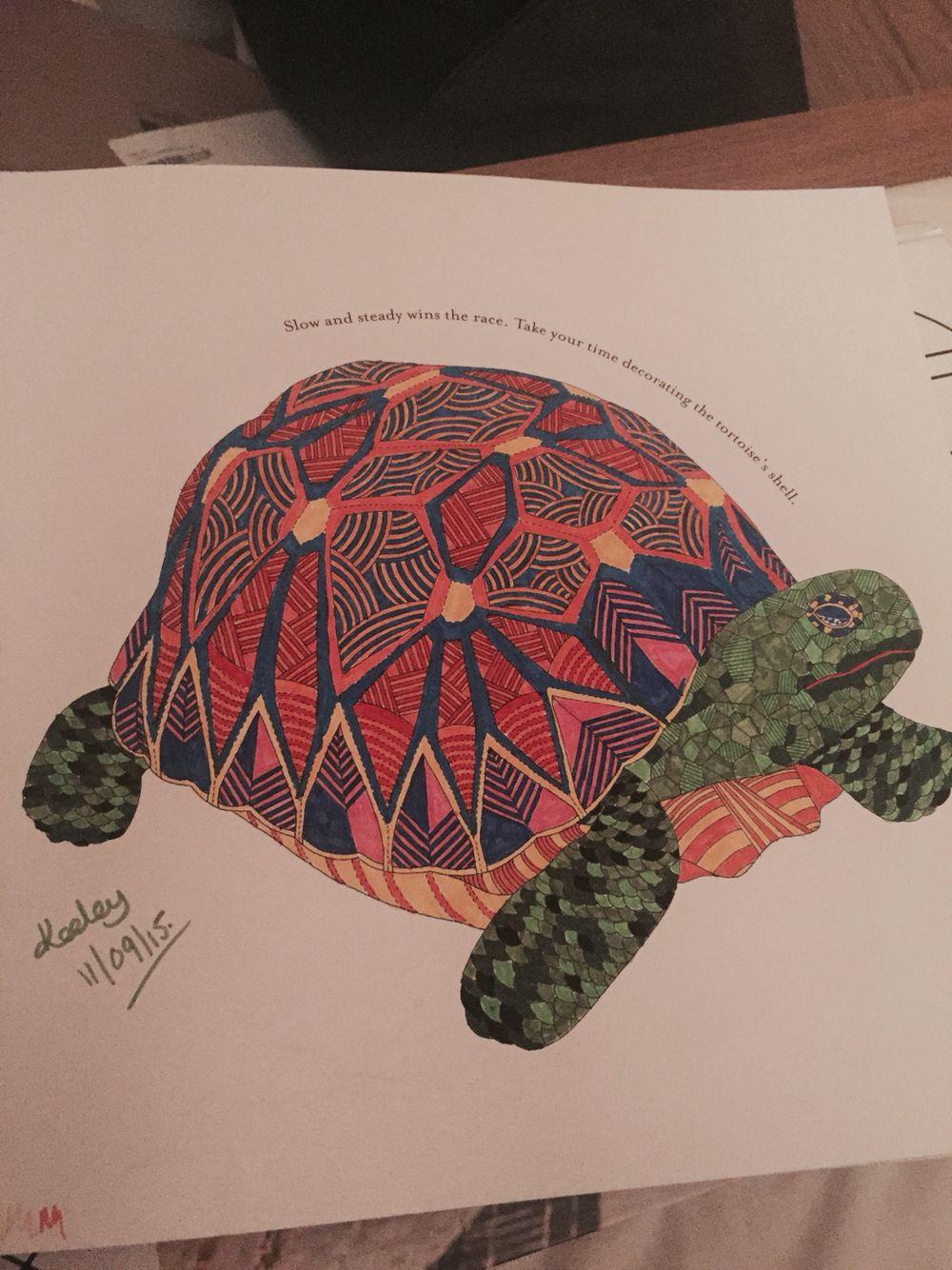 From Millie Marottas Animal Kingdom Colouring Book