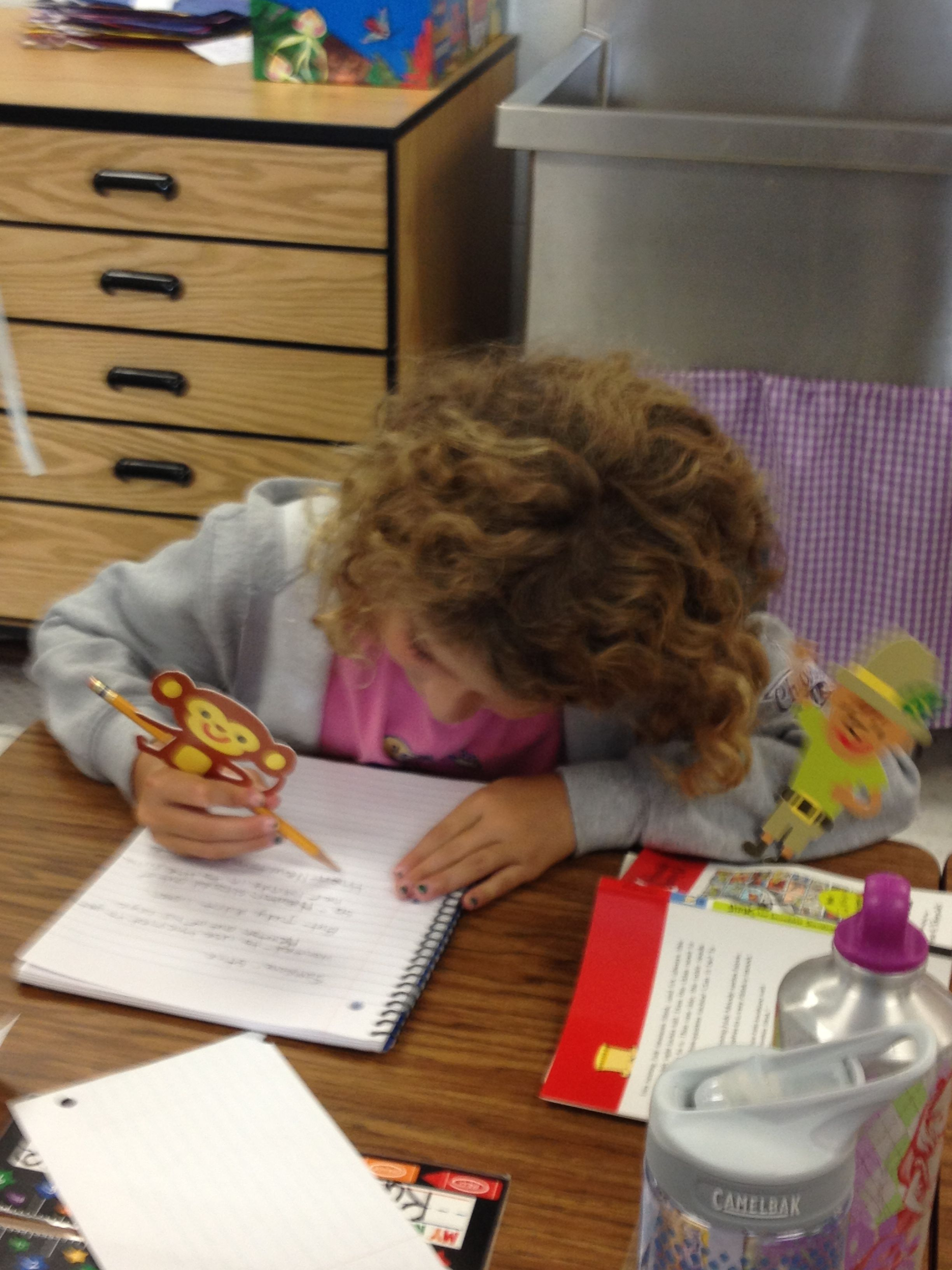 3rd grade Writer's Workshop