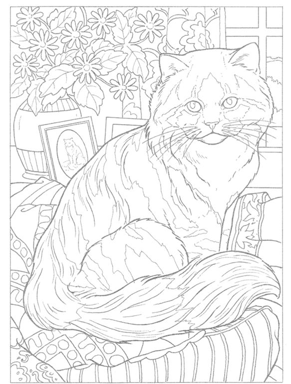 Striped Cat Coloring Page Enjoy Everything About Cats Get The