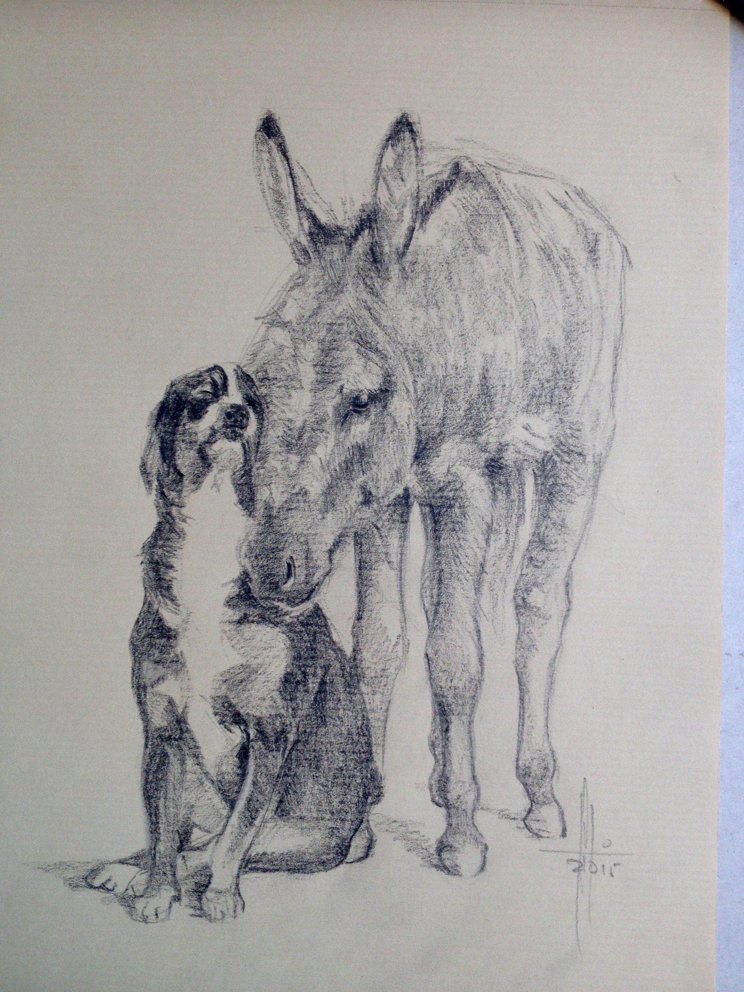 Dibujo de burro con perro carbn graso sobre Papel Canson A4