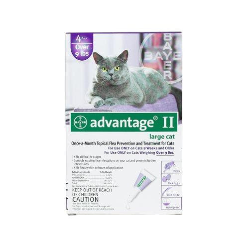 Advantage Flea Control for Cats and Kittens Over 9 lbs 4