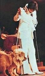 Elvis and getlo.