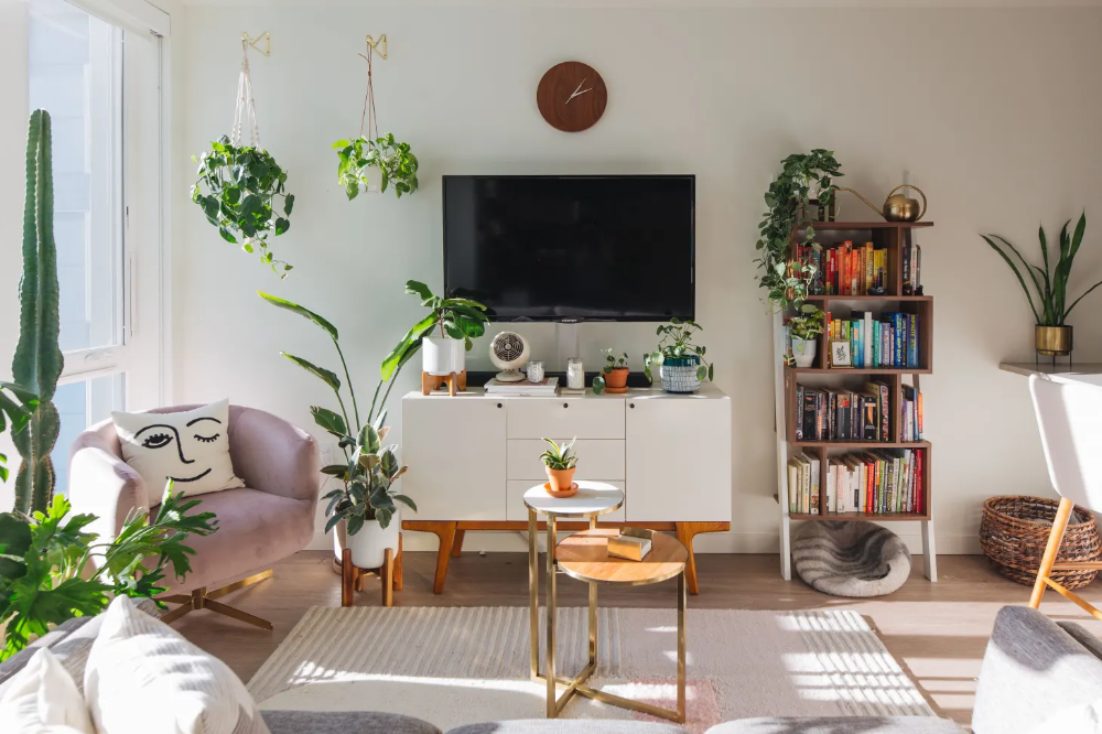 A Small Shared Seattle Apartment Is Full of Green Plants