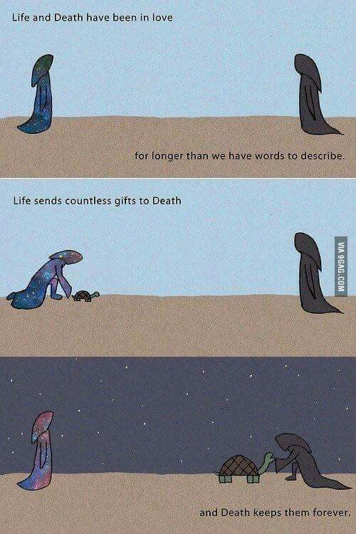 Life And Death Have Been In Love For Longer Than We Have Had Words To Describe Life Sends Countless Gifts To Death And Death K Life Funny Memes Life And Death