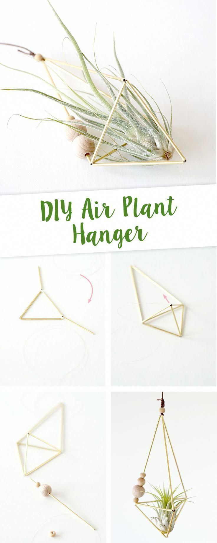 Easy DIY for an Air Plant Hanger on www.aentschiesblo ... #aentschiesblo #hanger #plant #diygartenprojekte