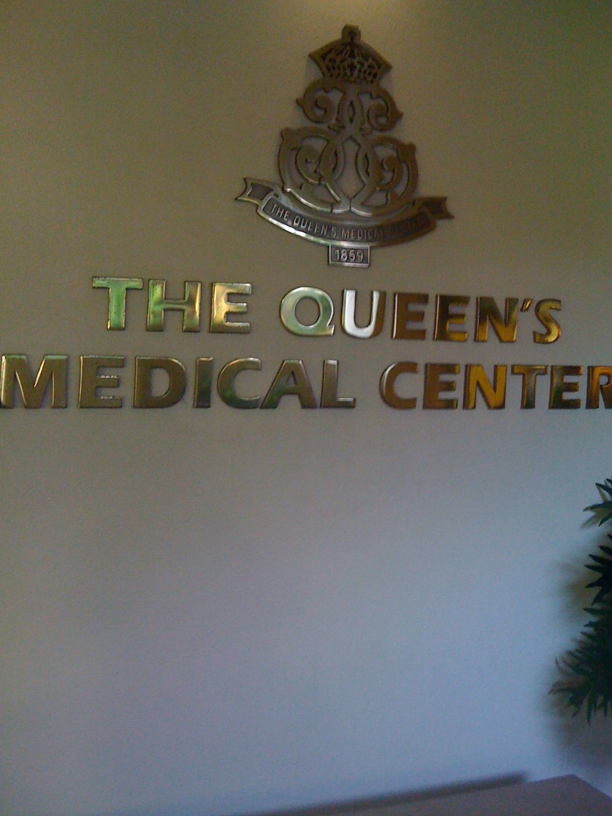 Queens Medical Center Honolulu Hi Hopefully We Won T