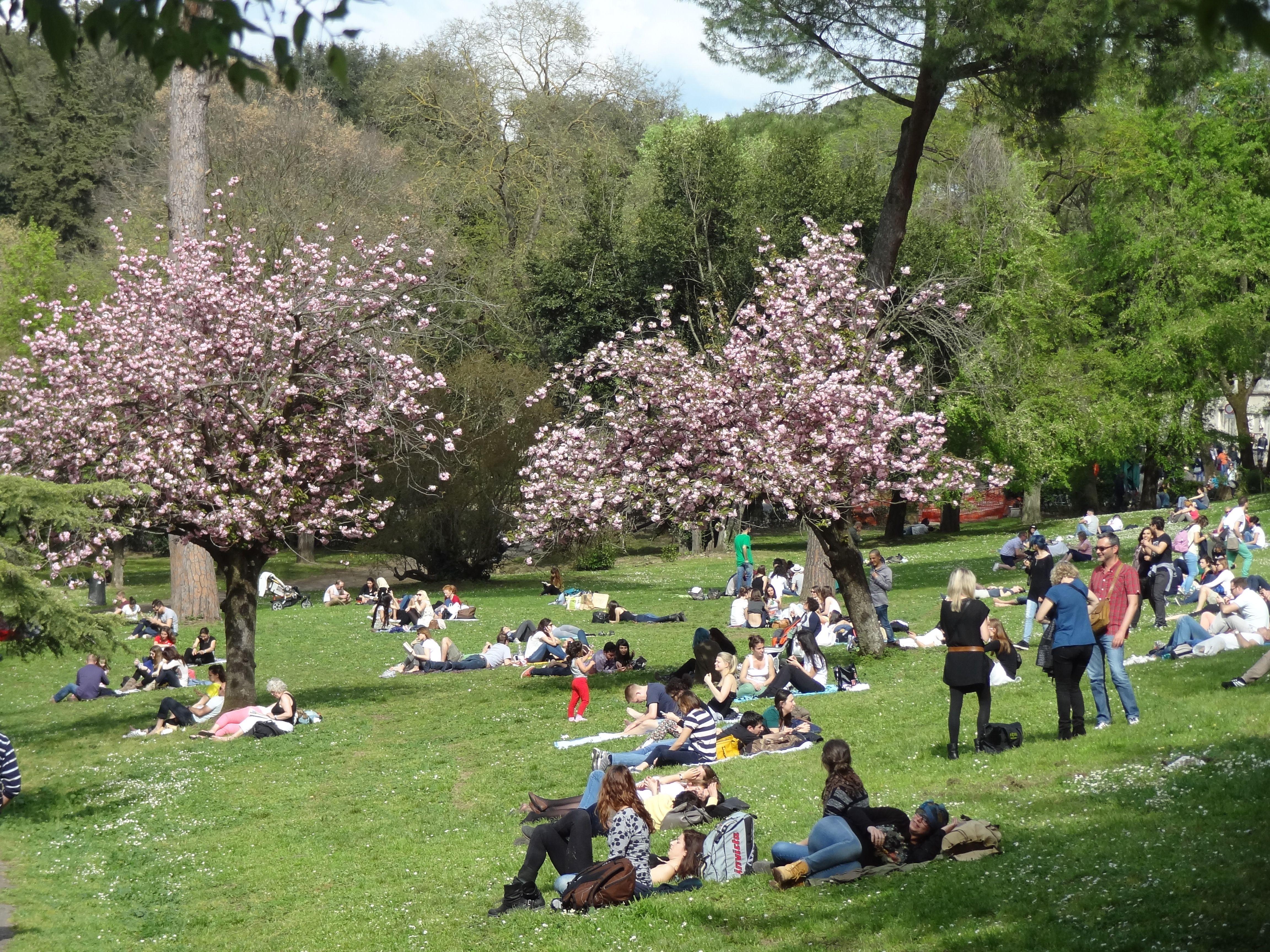 Zum Beispiel Den Frühling Im Park Der Villa Borghese Genießen. Die Villa  Borghese Zählt Zu Den Schönsten Stadtparks In Rom Und Liegt Etwas Oberhalb  ...