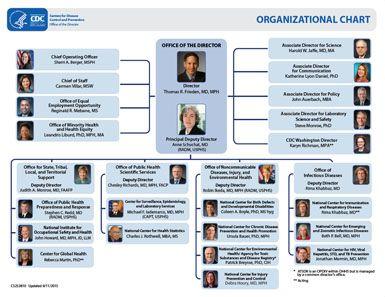 Graphic Cdc Organizational Chart