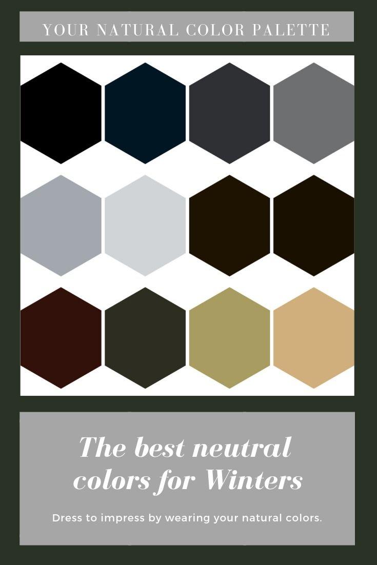 Best Neutrals For Winters Deep Winter Colors Deep Winter Palette Winter Color Palette