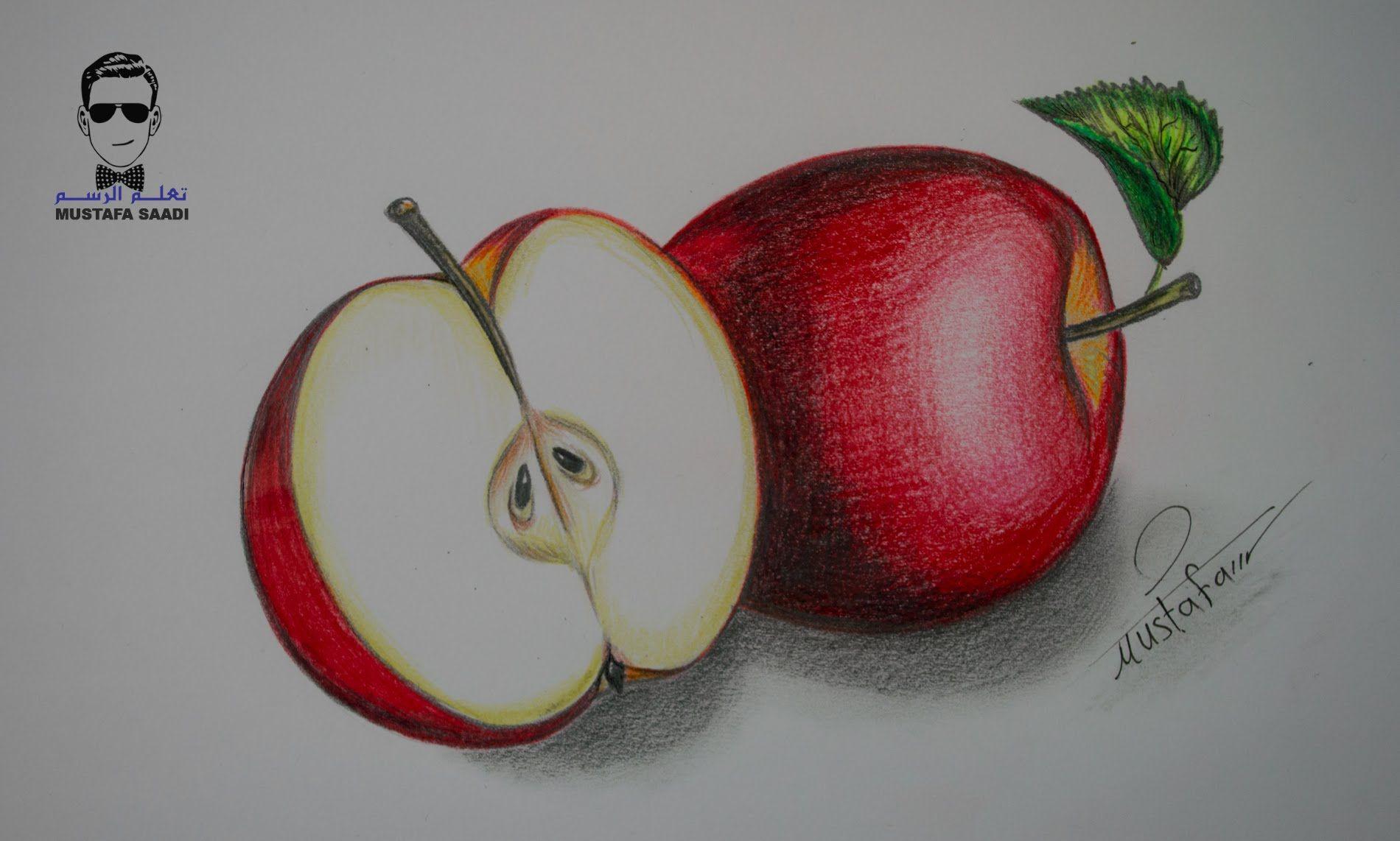 كيفية تعلم رسم تفاحة بالرصاص والالوان الخشبية مع الخطوات للمبتدئين Drawings Drawing Illustrations Food Drawing