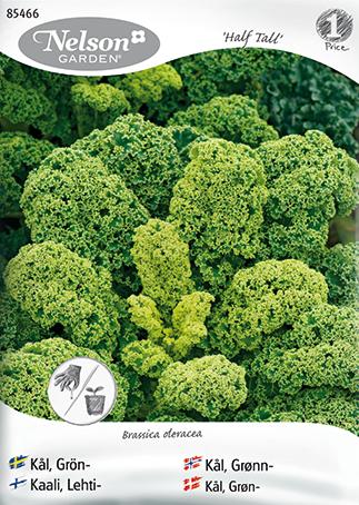 grönkål vitaminer