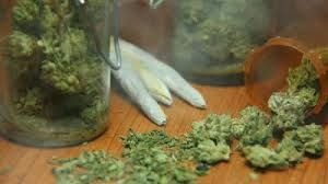 Dot-Bong Era's First Marijuana Brand Debuts
