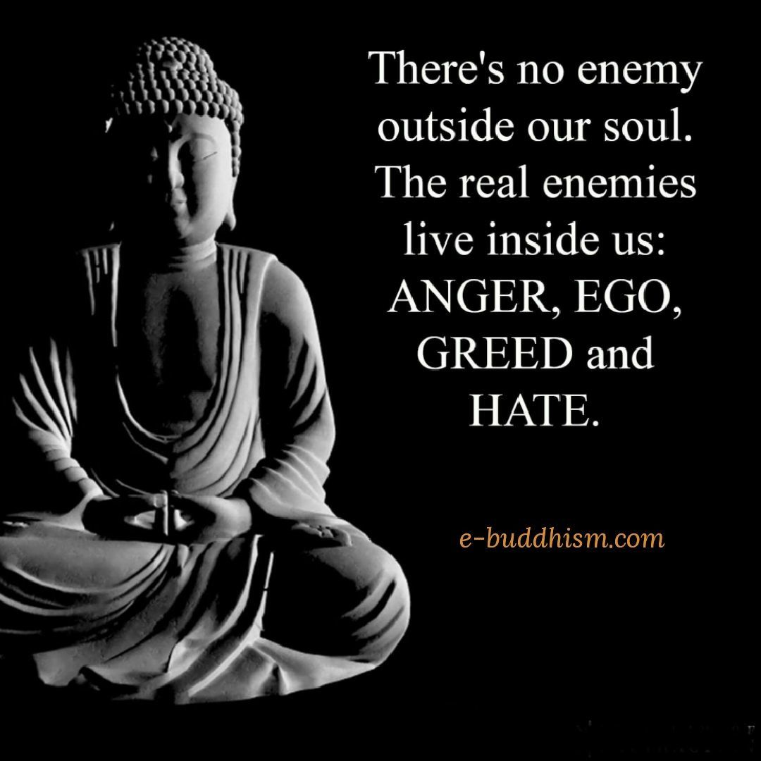 it s true isn t it buddhism quote buddhist quotes buddha quote