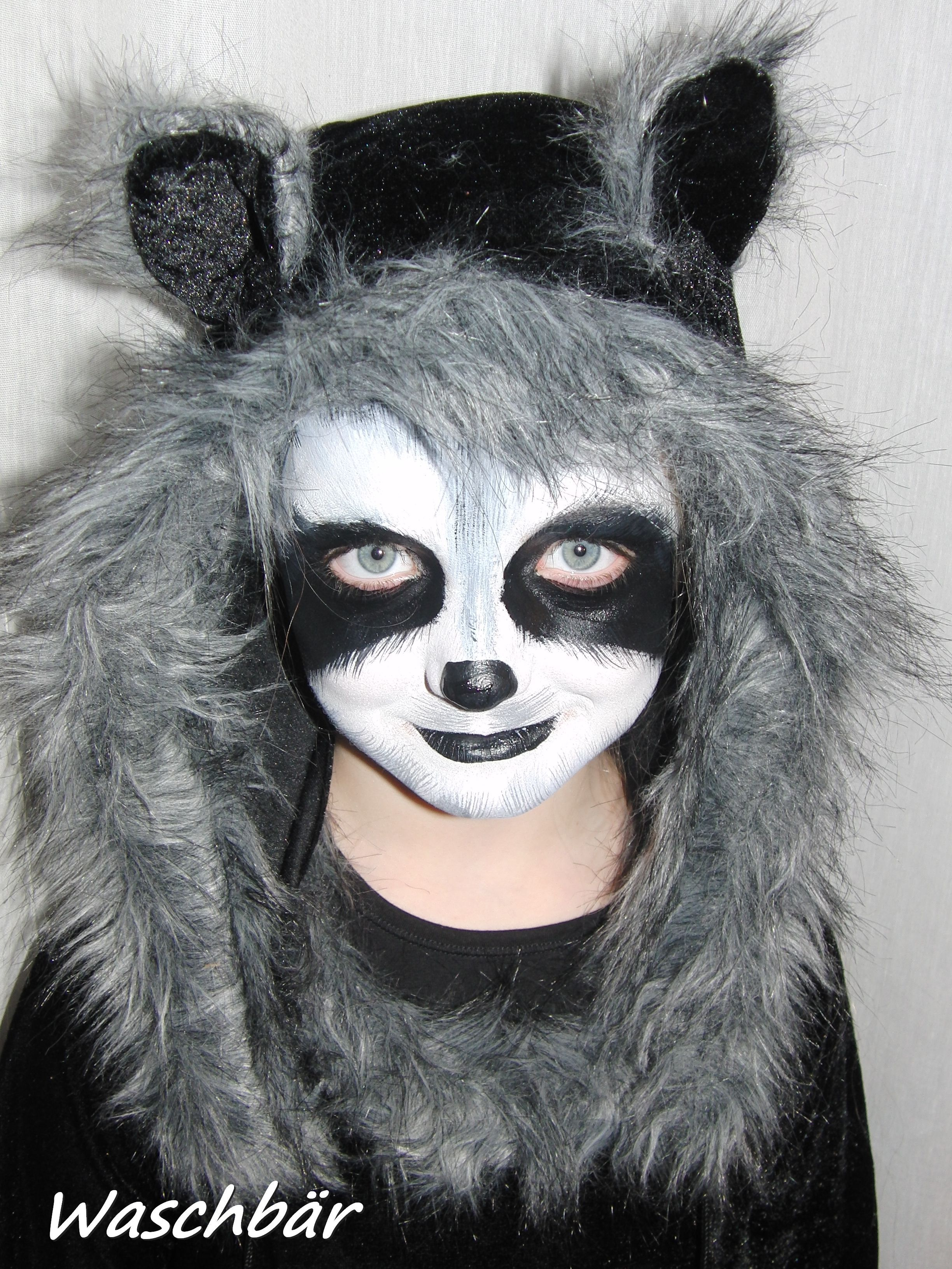Face painting Racoon