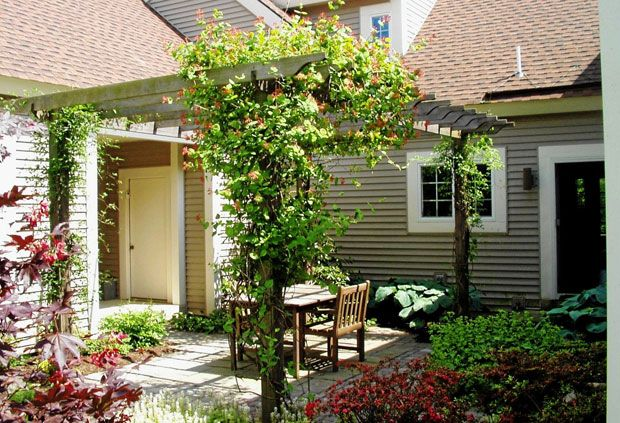 Great mix of foliage colors.  Super patio idea.  Pergola!!