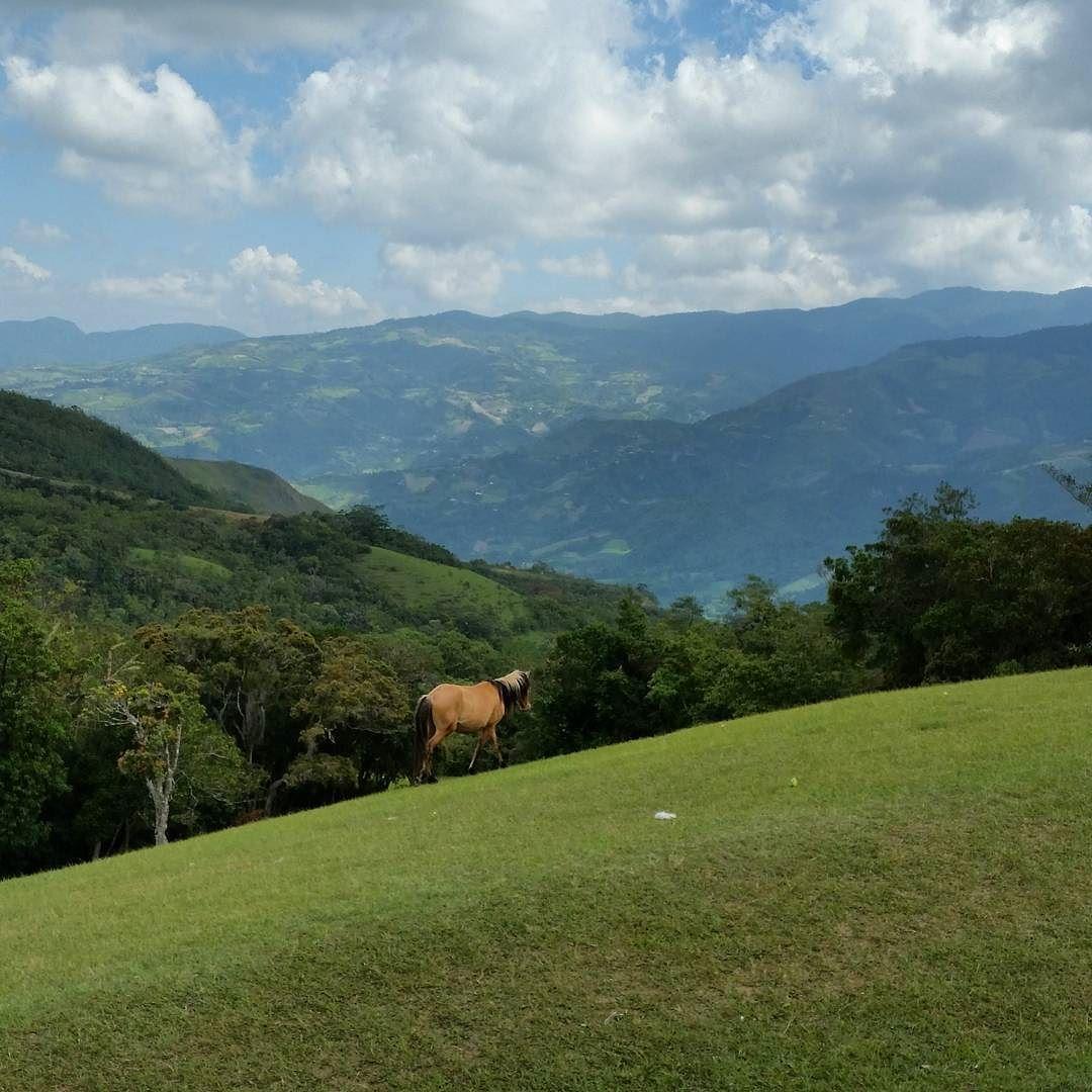 Gorgeous! shared by zipcomputer #landscape #contratahotel (o) http://ift.tt/213vmYp #paisaje #paisajes #naturaleza #movistar_ve #instalike #igersvenezuela #turismo