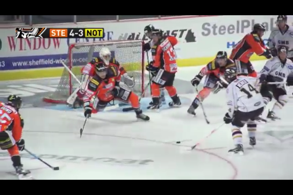 HallFast are proud sponsors of the Sheffield Steelers