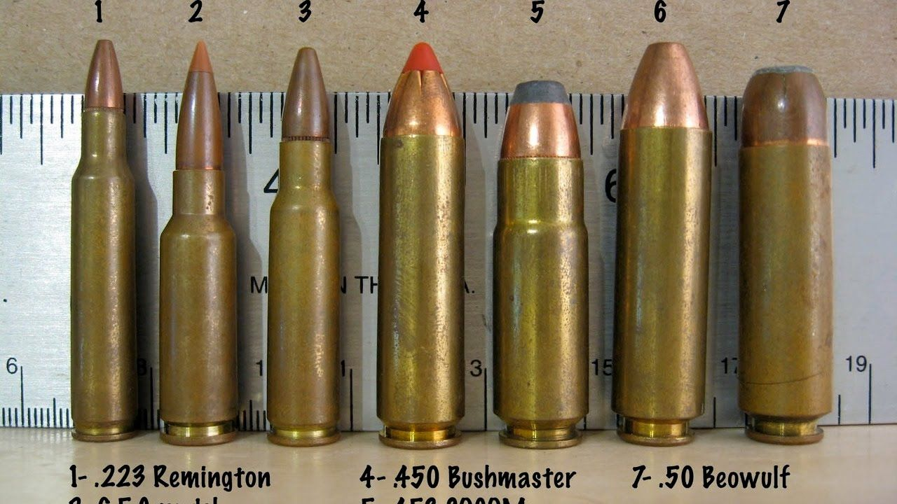 450 Bushmaster & 50 Beowulf - Why Pick These AR-15 Calibers