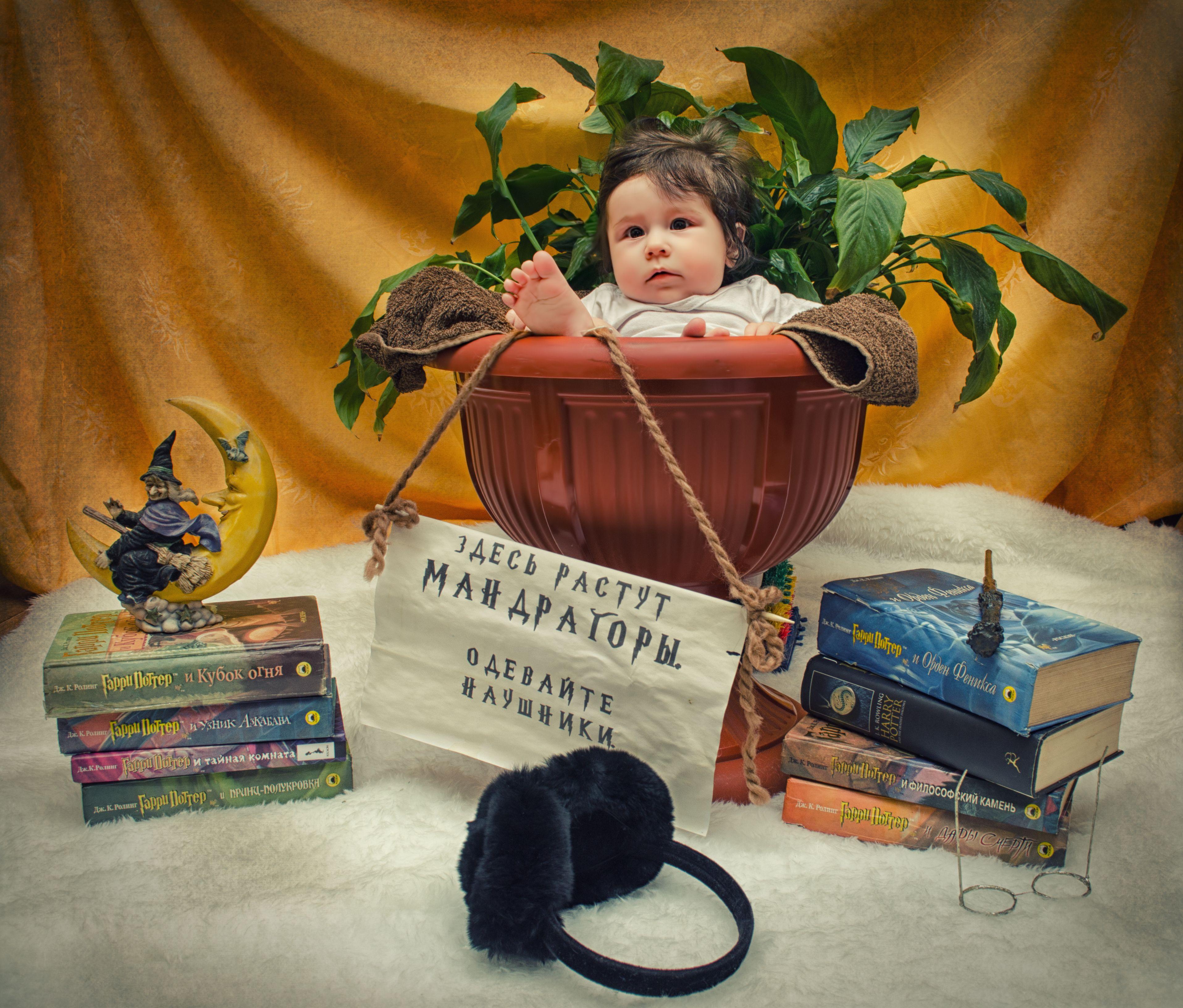 Приглашаем всех на фотопроект, для детей от 0 до 10 лет в ...
