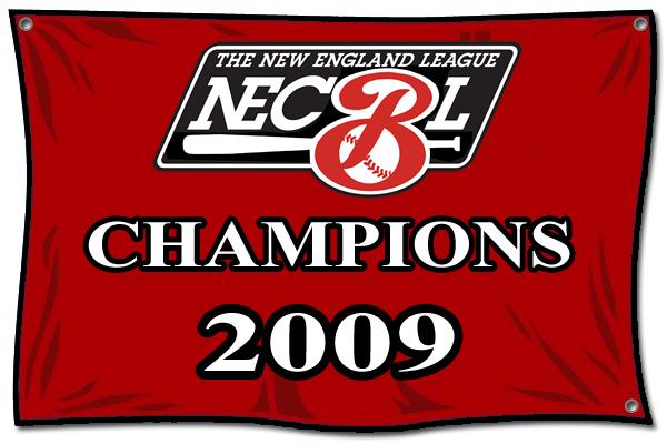 News From The Nest Necbl Newport Gulls England League Newport Sport Team Logos