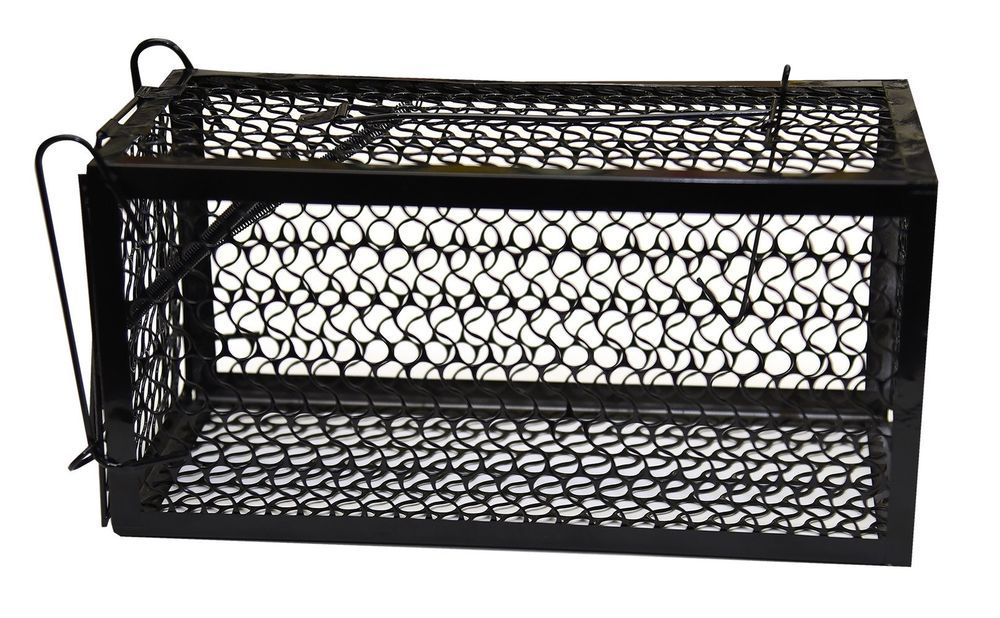 Harris Catch & Release Humane Animal And Rodent Cage Trap