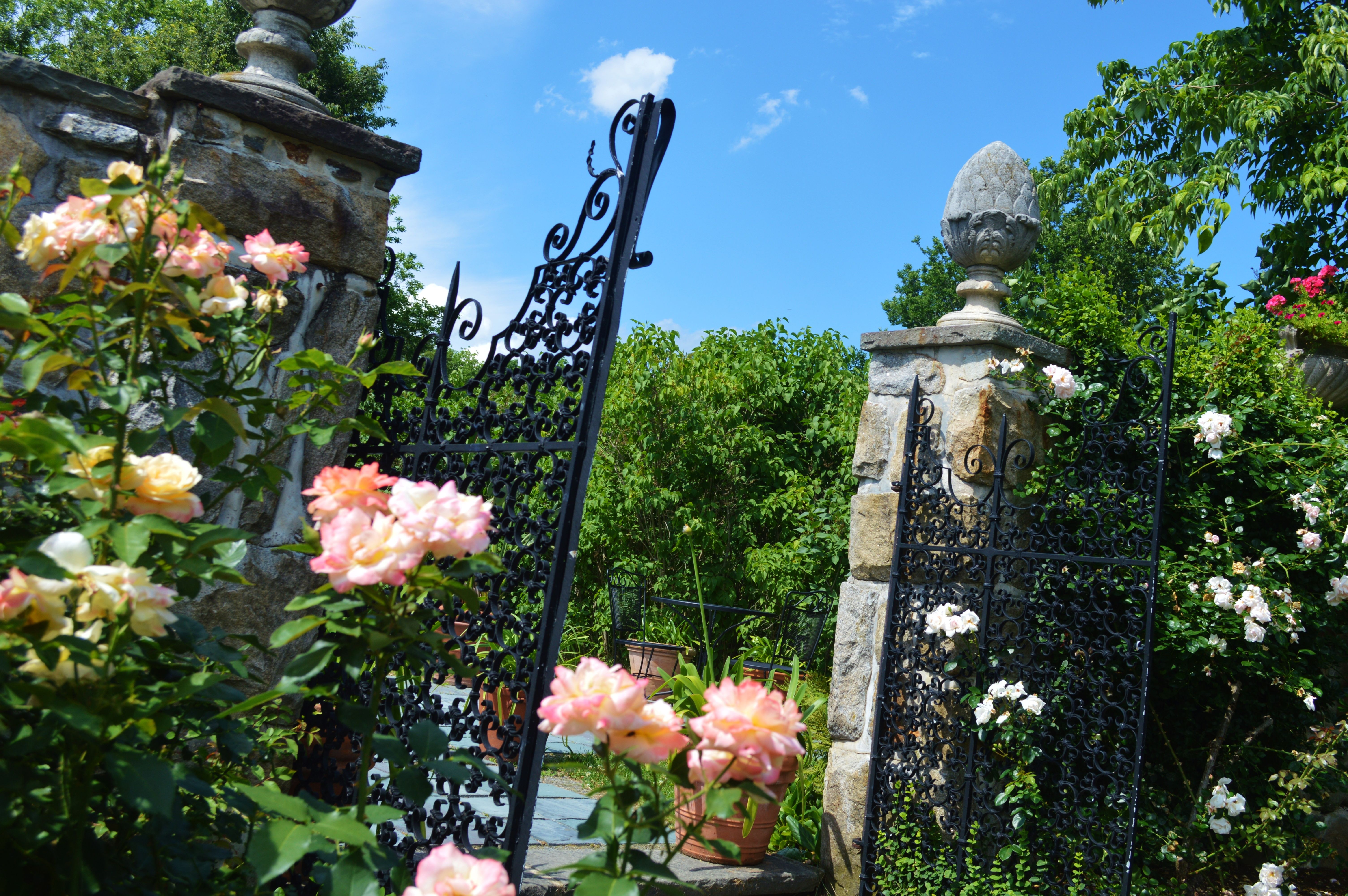 Flowers at the Stevens-Coolidge Place (North Andover, MA). A ...