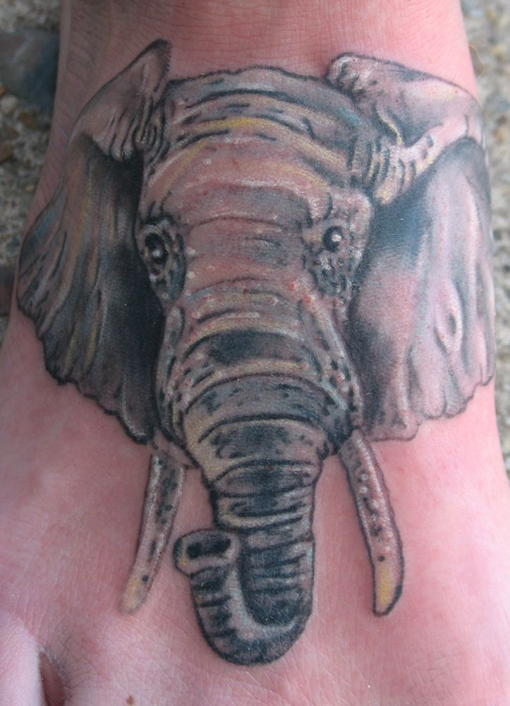 Elephant Footprint Tattoo Elephant Head Feet Tattoo ...