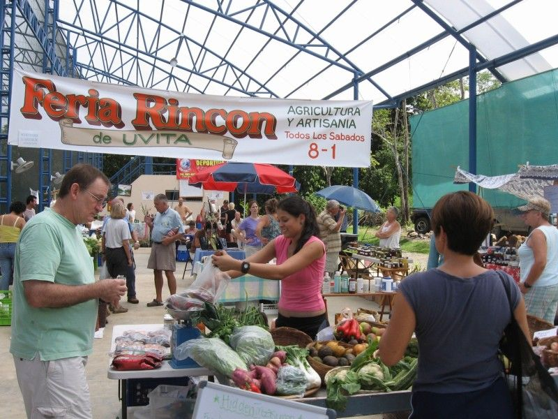 11 tips for living in ojochal costa rica costa rica