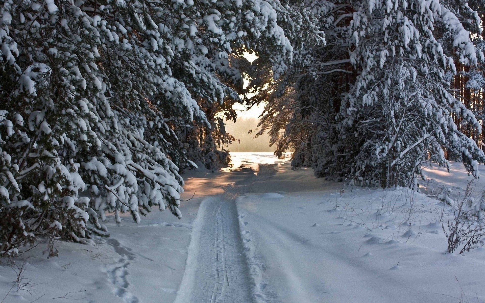 best pic hd winter in high resolution sharovarka