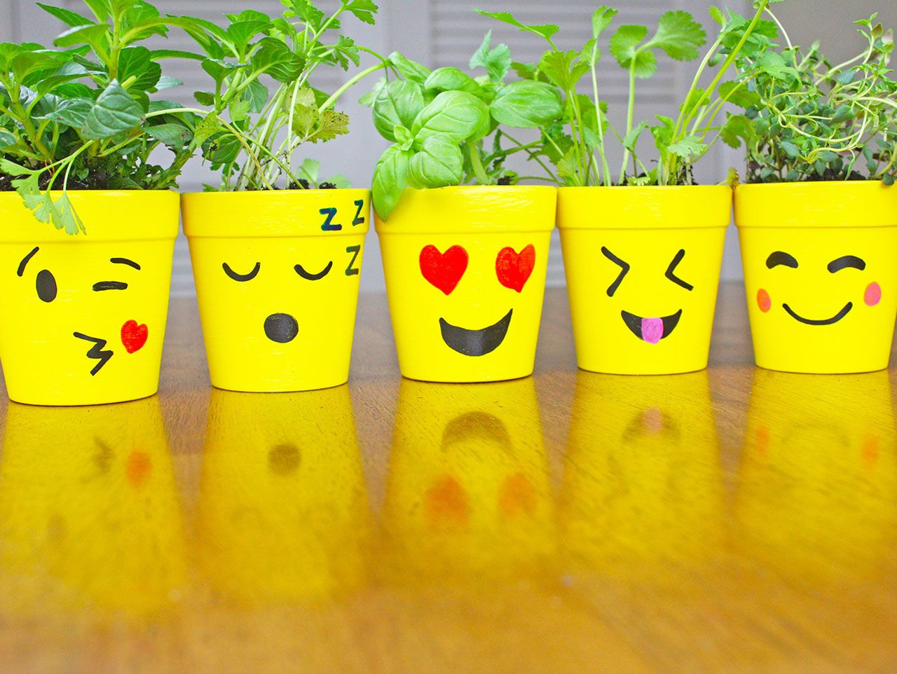 DIY Emoji Ceramic Flower Pots Flower pot crafts, Painted