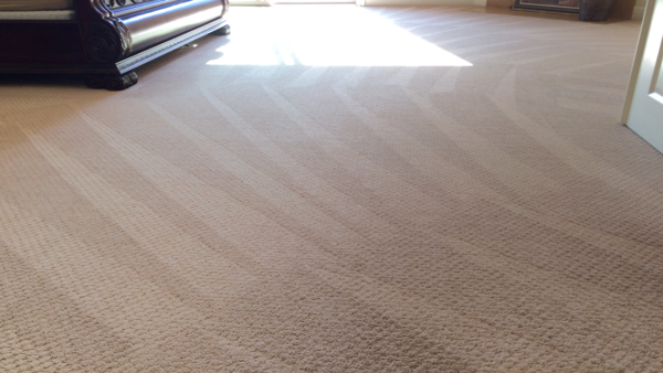 Perfect Carpet Cleaning Lines Leading Into A Bedroom