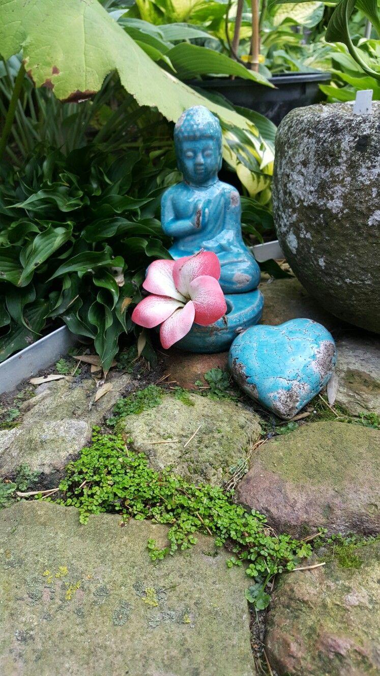 Bubikopf im Garten