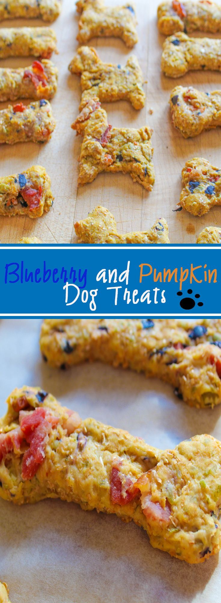 Delectable homemade pumpkin and blueberry doggy treats