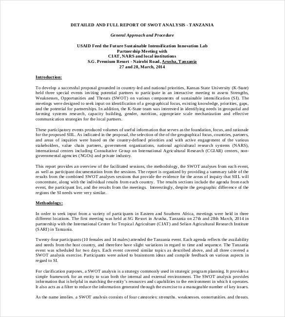 Strategic Analysi Report Template 3 Professional Swot Analysis Essay Example