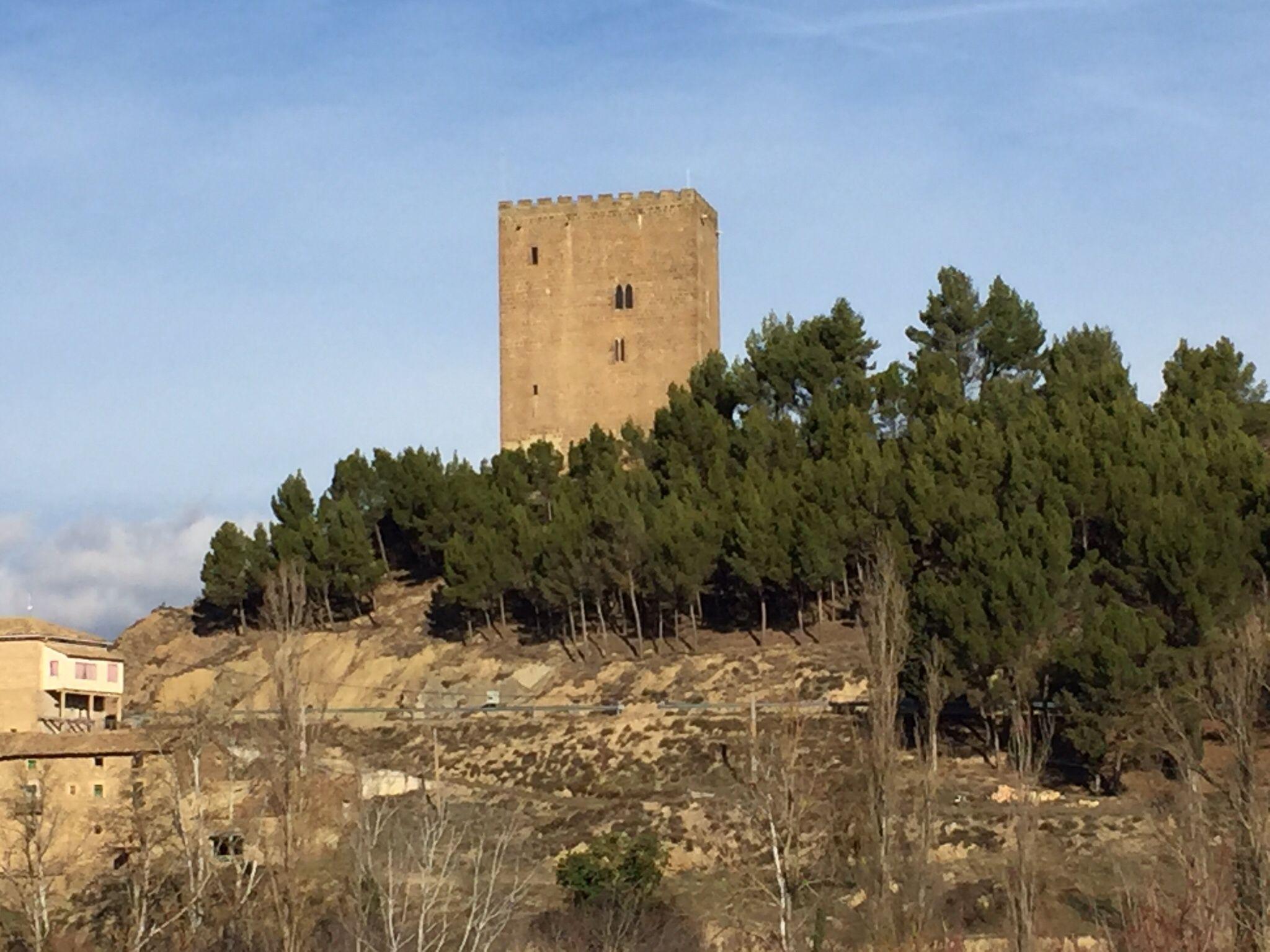 Castillo de Naverdun