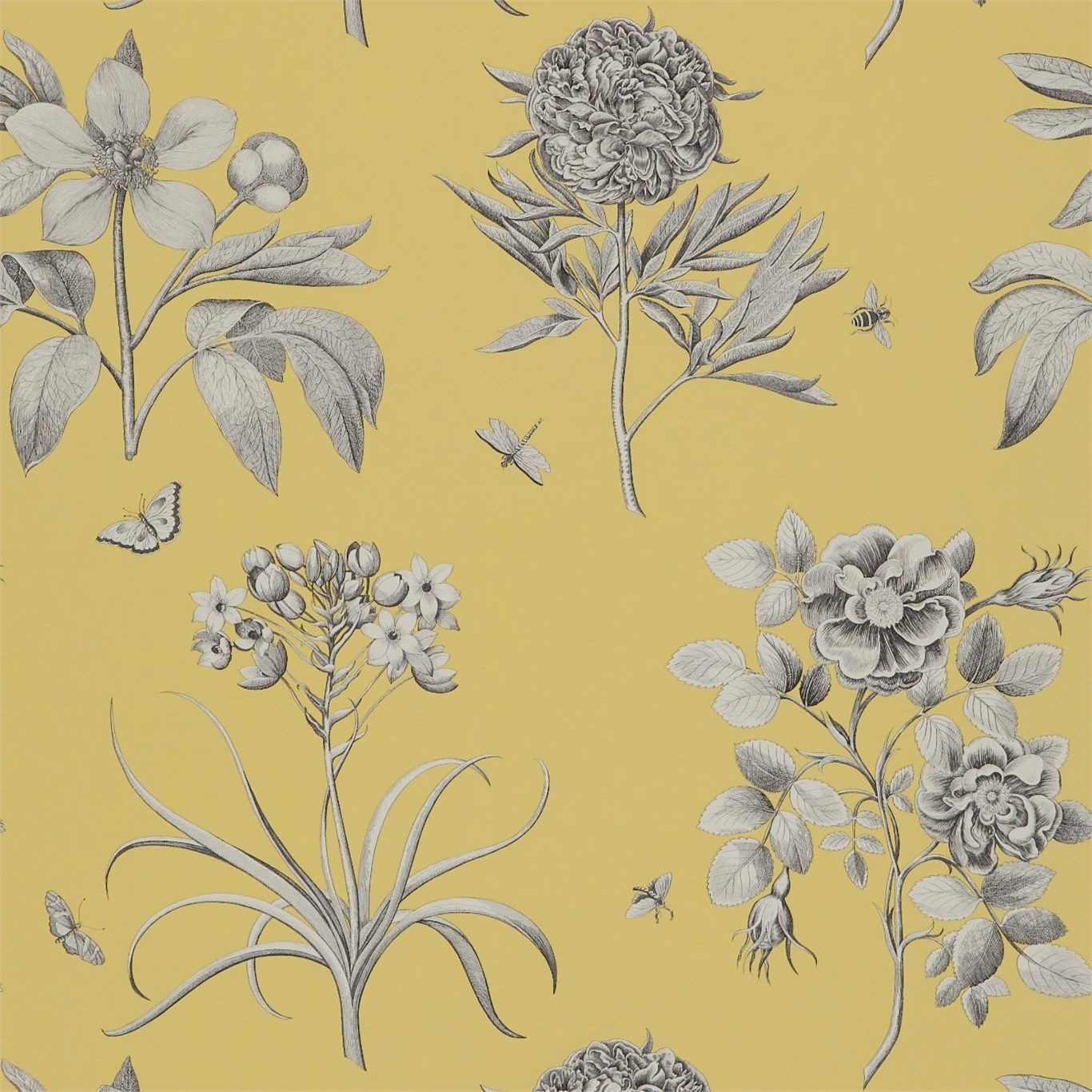 Etchings Roses Wallpaper Grey Floral Wallpaper Rose Wallpaper