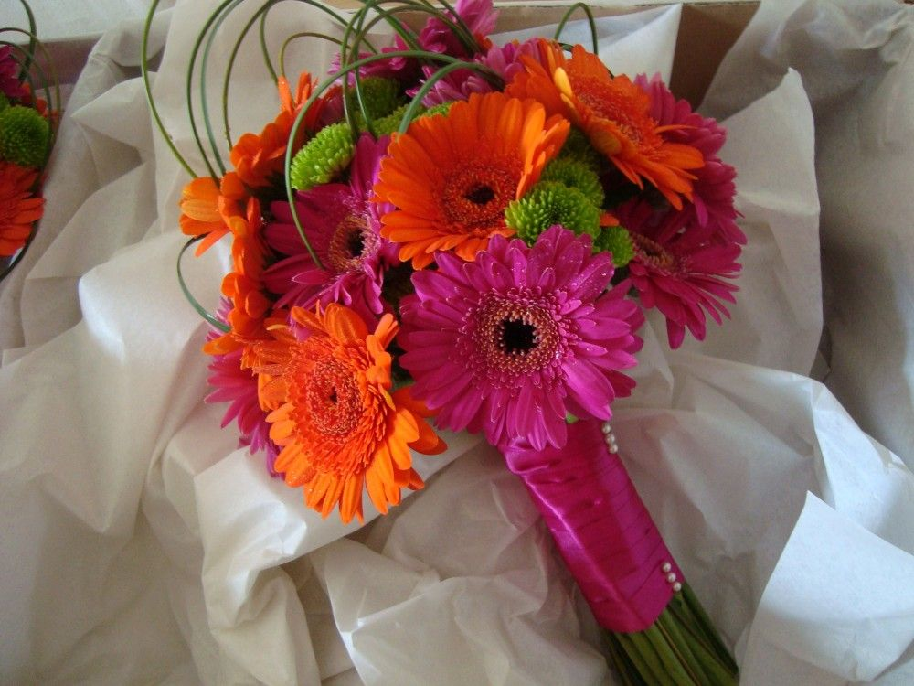 gerbera daisy bouquets for weddings pink wedding bouquet pictures posts tagged fuschia pink 4471