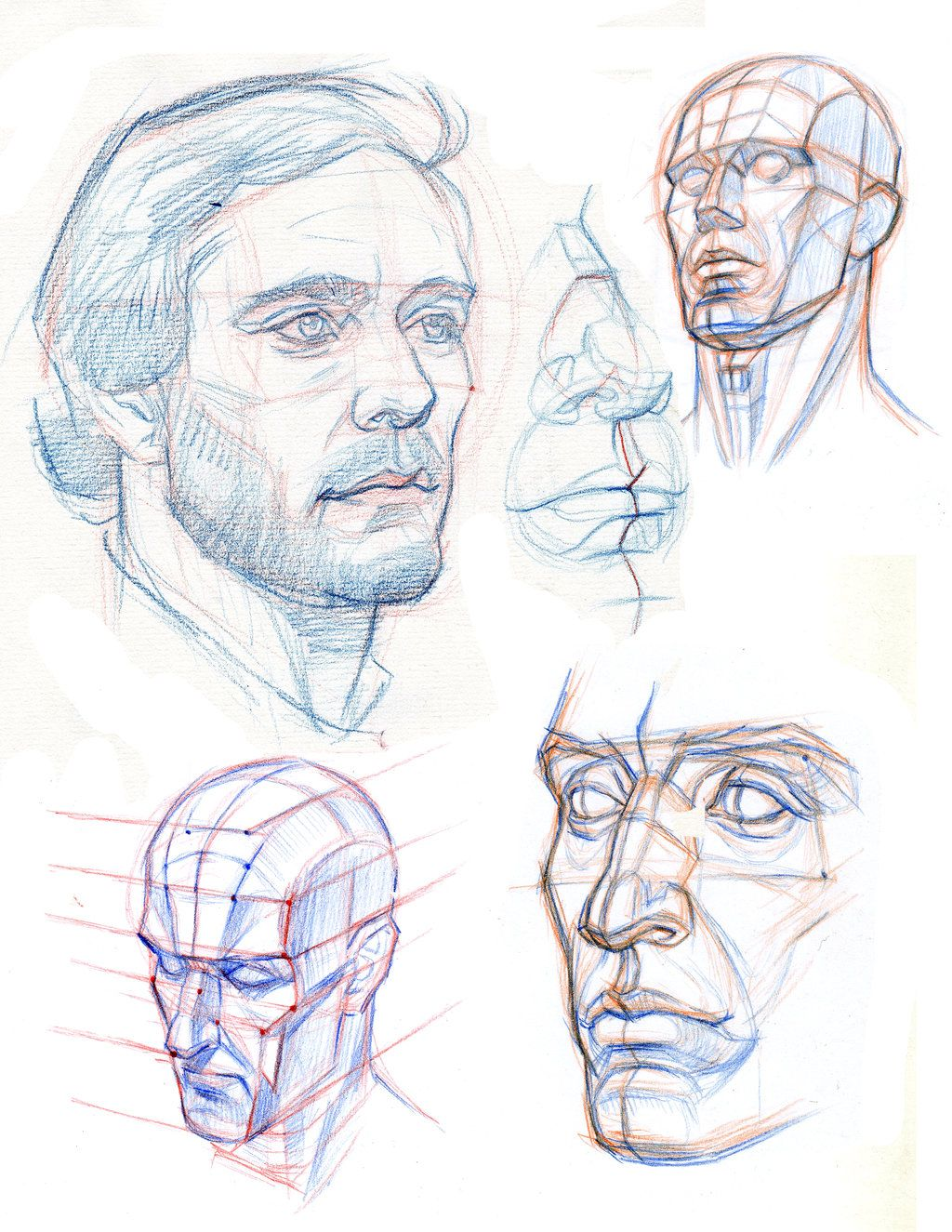 Cabeza | Pinturas | Pinterest | Anatomía, Dibujo y Dibujar