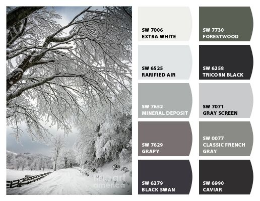 Icy gray color scheme | Colors in 2019 | Grey paint colors