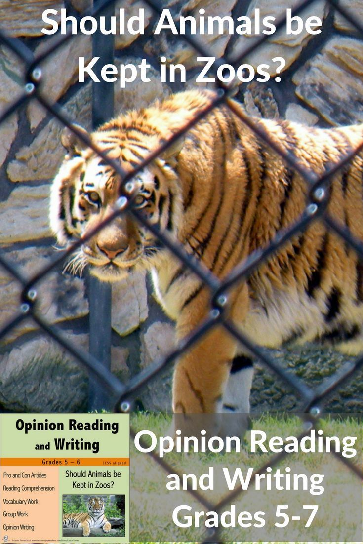 14+ Are zoos bad for animals images