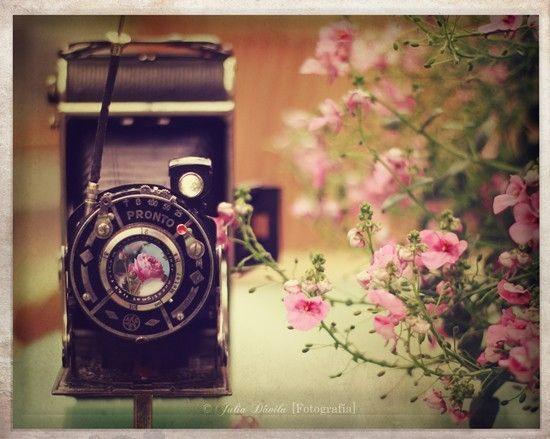 Vintage Cameras At Weddings
