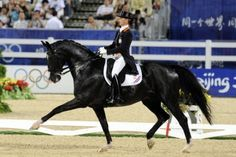 Dressage 101: What You Need to Know #equestrian #horses #dressage #dressagecompetition