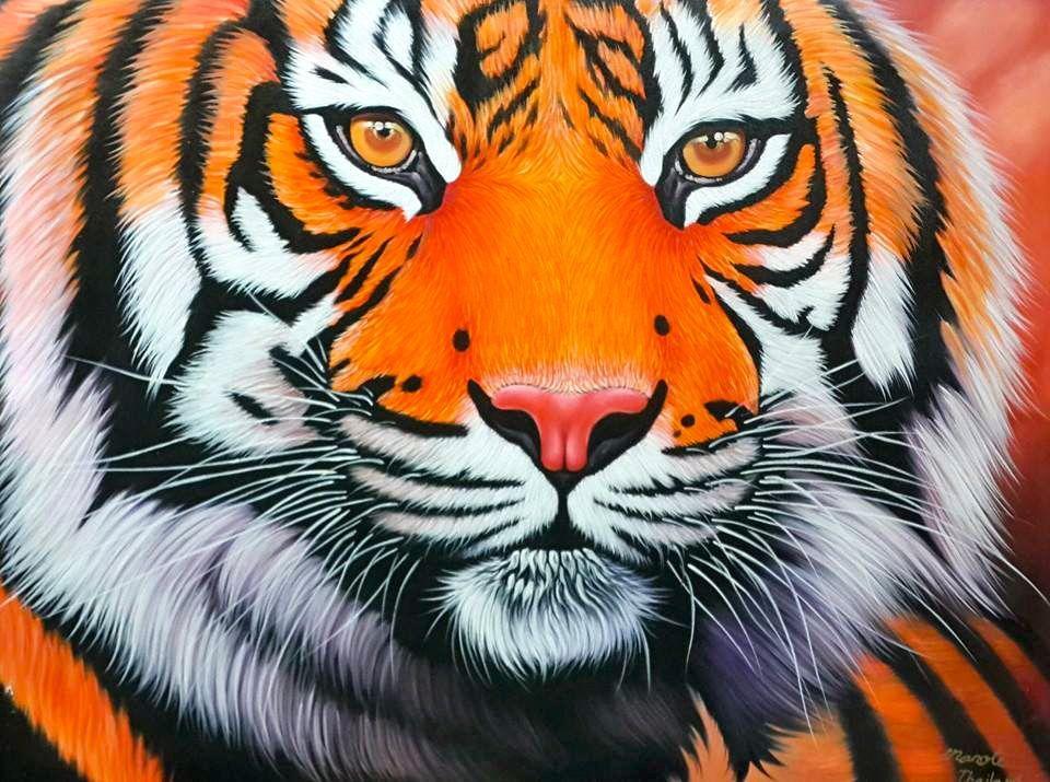 Tiger Staring | Dao Art Gallery